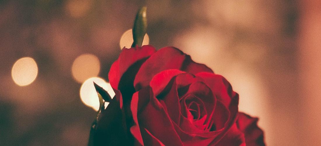 Matrimonio: Como Reconquistar a tu Pareja - 5 Consejos de Oro para Recuperar un Amor Perdido