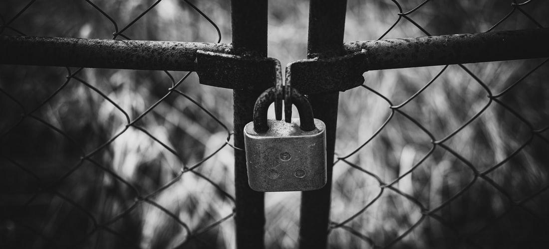 Software: Cerraduras y Sistemas Biométricos para Esquemas para Seguridad Mucho Más Innovadores