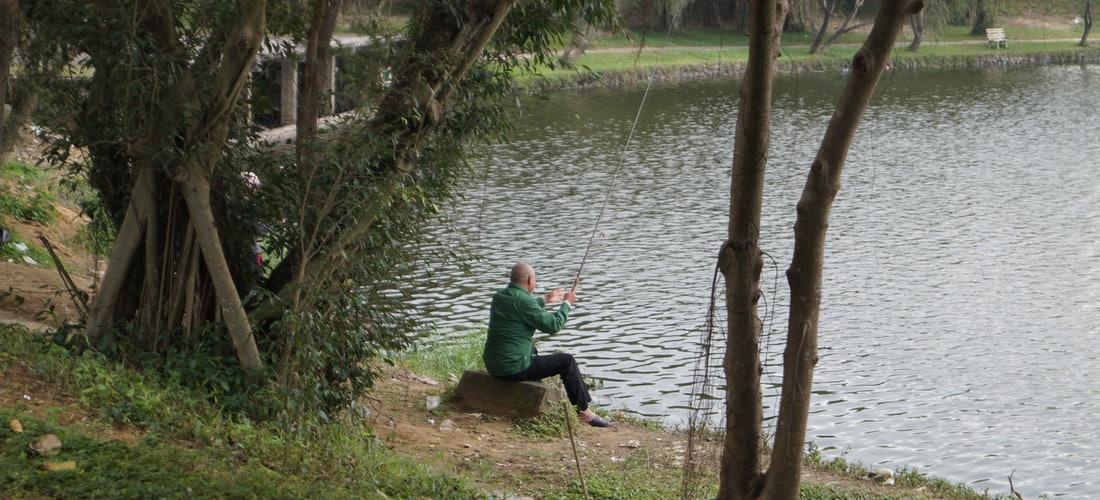 Seguridad Informática: ¿Phishing o Fishing?