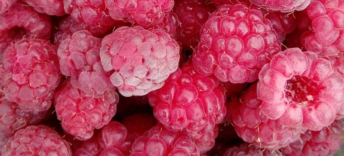 Gastronomía y Recetas: Frutas Secas,especiarias E Castanhas,