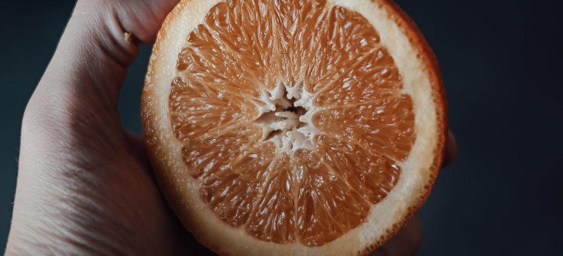 Gastronomía y Recetas: Cómo Conservar tu Comida en Fresco por 21 Días o Más