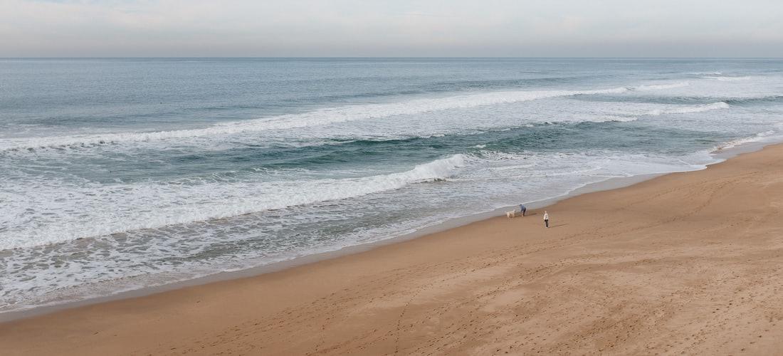 Hotel las Palomas Puerto Peñasco – una Excelente Opción para Visitar la Playa y Tener una Visita Maravillosa a la Playa.