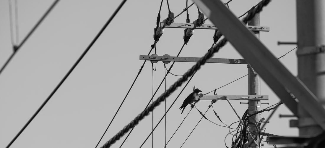 Software: Lanzamiento Oficial de Tuneup Utilities™ 2014