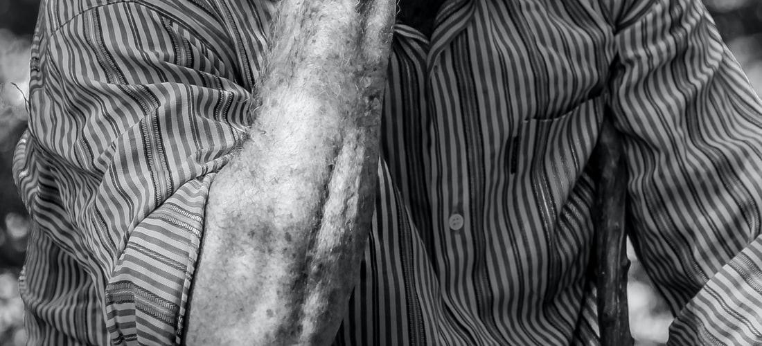Enfermedades: Ginkgo Biloba una Posible Cura para el Alzheimer
