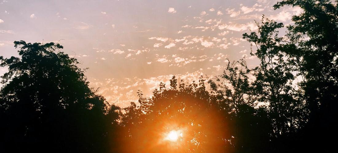 Estética: ¿Cómo Se Enfocan en el Ojo los Rayos de Luz?