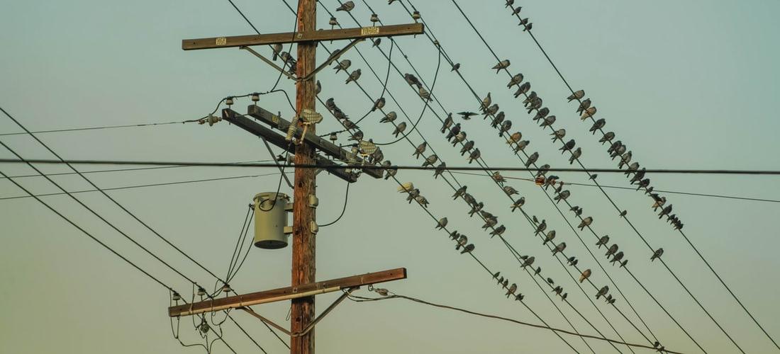 Tecnología e Información: Caso Real de Cómo Tuneup Utilities Eliminó 185gb Sólo en Archivos Duplicados