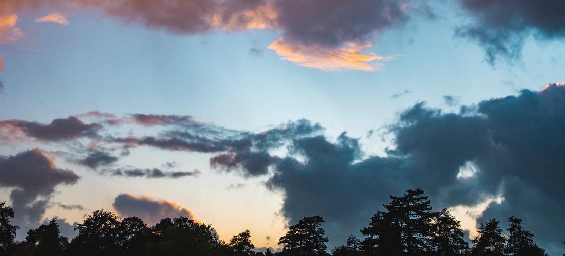 Internet y Negocios Online: Los Clientes Prefieren los Despachos Que Trabajan Con un Software en la Nube