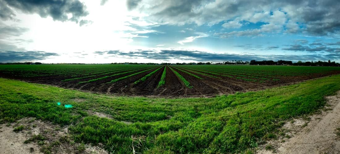 Ecología: Agricultura de Precisión