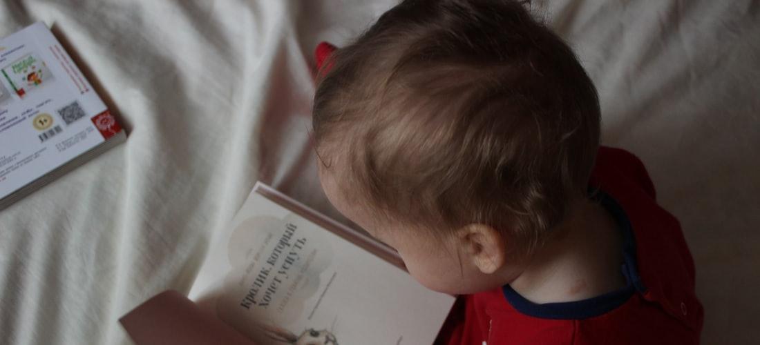 Religión: Qué Entendemos a Través de la Lectura de las Cartas