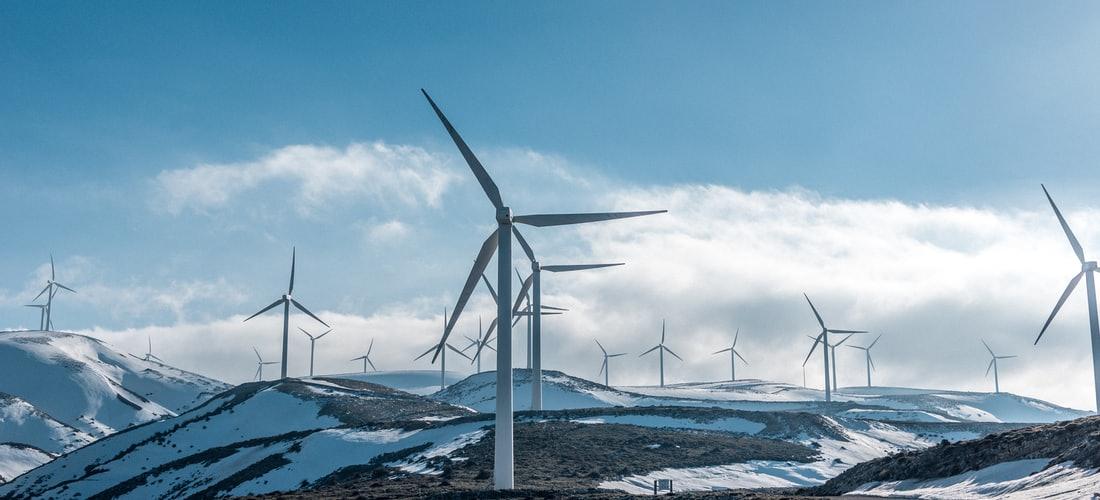 Energías Alternativas: La Energia Biomasa, una Clara Opcion de Futuro