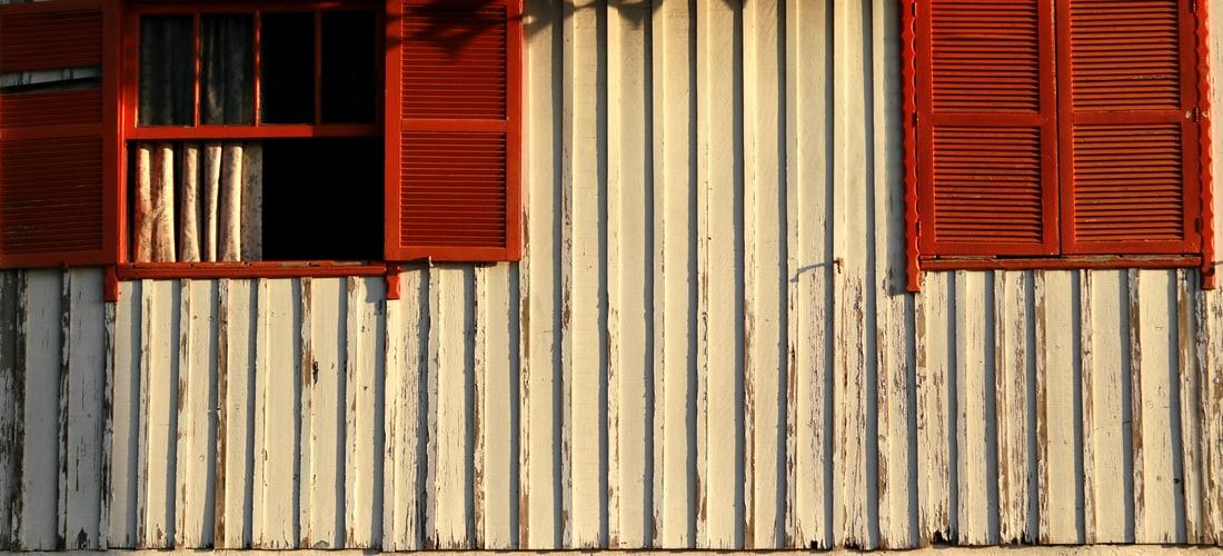 Ecología: La Importancia de un Aire Limpio en Casa