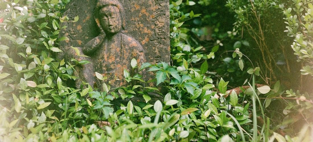 Cultura Nacional: Los Petroglifos de las Labradas