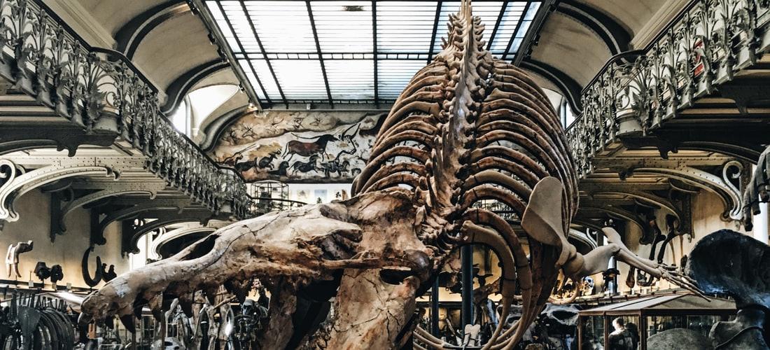 Cultura Nacional: Museo Thyssen en su Primer Aniversario Supera las 200.000 Visitas