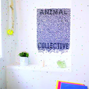Live at 9:30 - Animal Collective