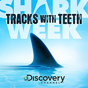 Sharks (Discovery Channel) - Josh Ralph
