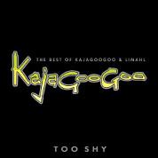 Too Shy - the Best of Kajagoogoo & Limahl [CD & DVD]