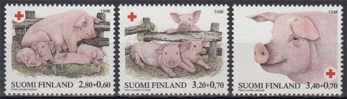 zwergschweine als haustier