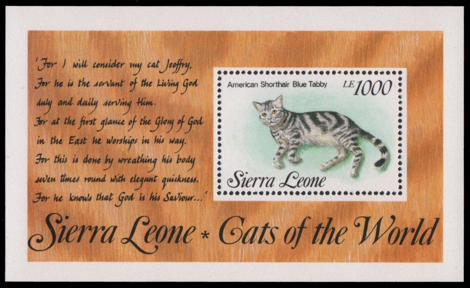 Sierra Leone 1993 - Mi-Nr. Block 225 ** - MNH - Katzen / Cats