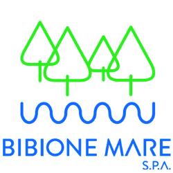 BIBIONE MARE SPA