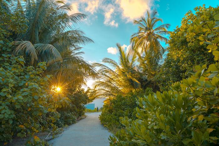 Offerte Atollo di Laamu