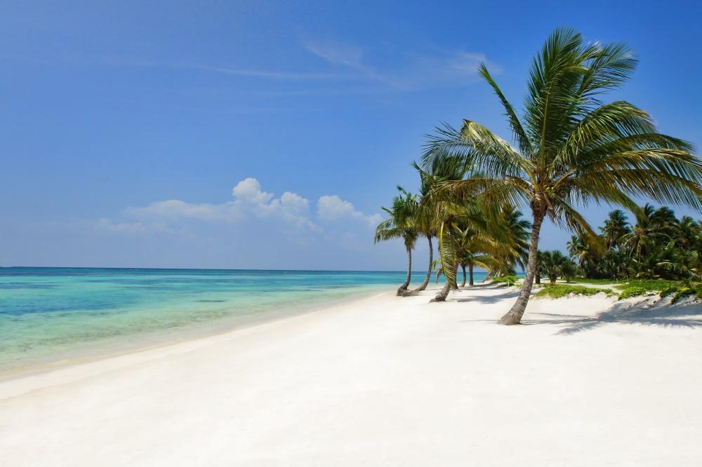 Immagine Offerte Punta Cana
