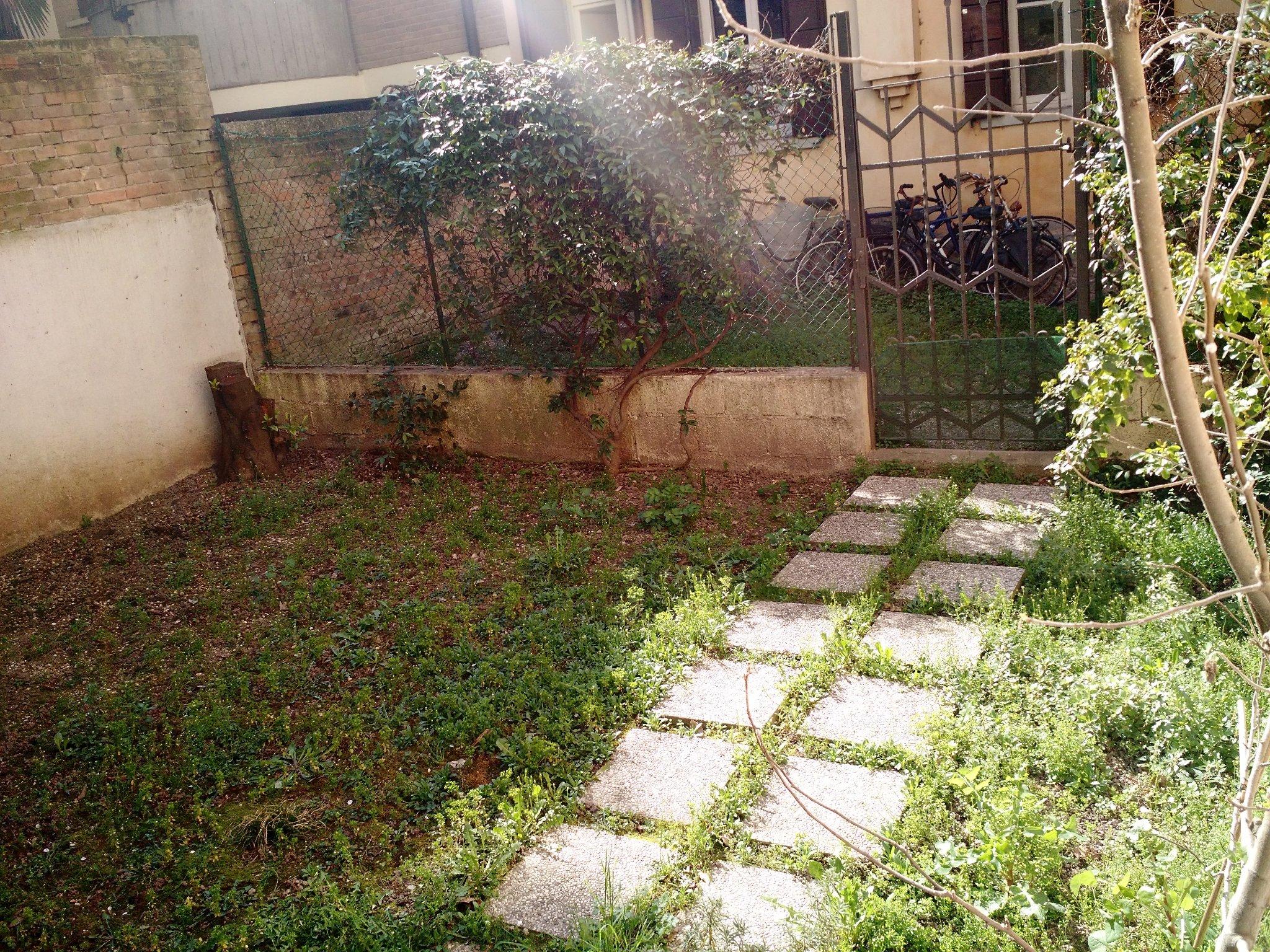 Sistemazione giardino e semina della nuova erba 25 mq - Quando seminare erba giardino ...