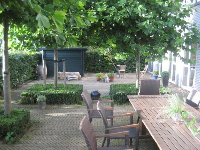Herinrichten renoveren tuin 8x16 mtr werkspot for Tuin renoveren