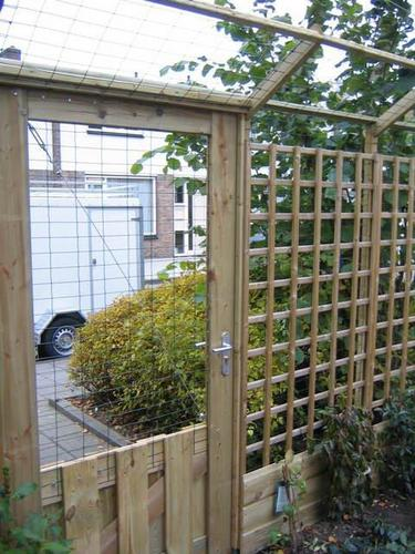 Outdoor Cat Enclosure Ideas