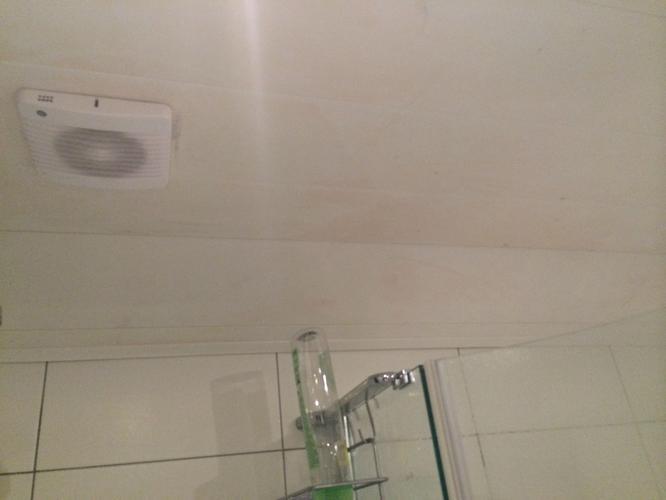 Cando Plafondplaten Badkamer : ≥ kunststof wand en plafond delen terra decor cando bruynzeel