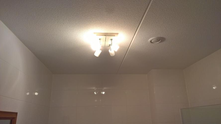 Verlaagd Plafond met spotjes in badkamer + toilet - Werkspot