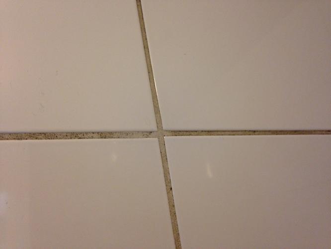 Schimmel in badkamer verwijderen / plafond herstellen - Werkspot