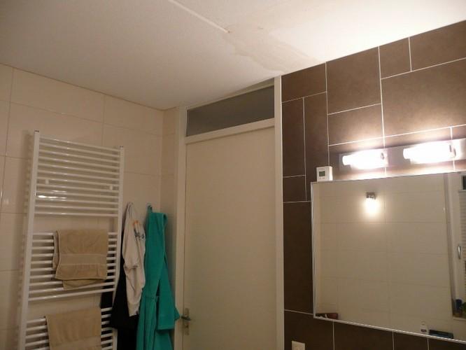 Agnes Plafondplaten Badkamer : Badkamer plafond platen