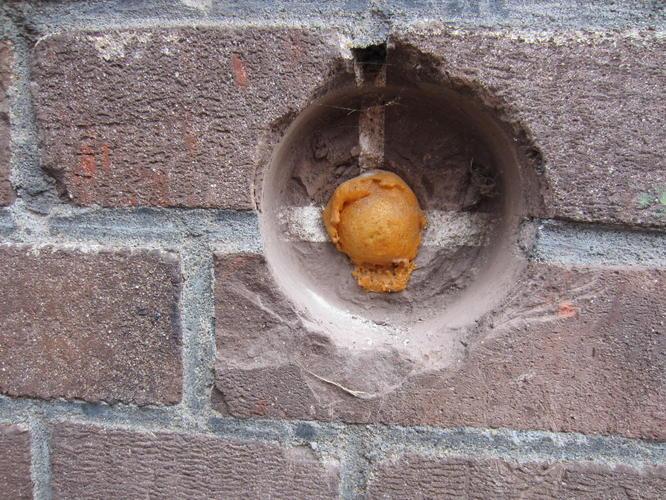 Buitenkraan werkspot - Buiten muur kraan decoratieve ...