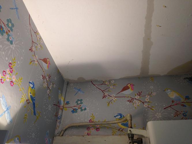 Behang Voor Toilet : Mooi behang voor een luxe toilet interieur inrichting