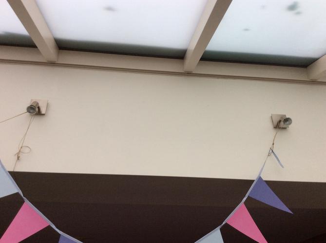 Vervangen adapter spotjes badkamer, spotjes uitbouw buiten en plaat ...