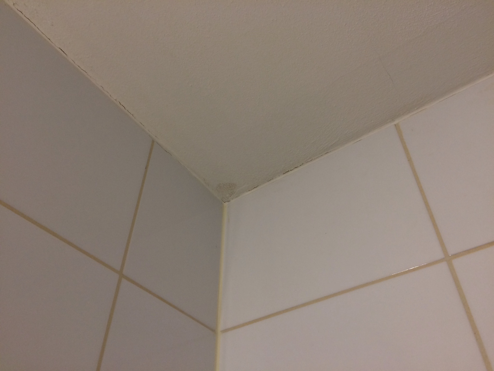 Waterdicht afkitten van badkamer m toilet half betegeld en
