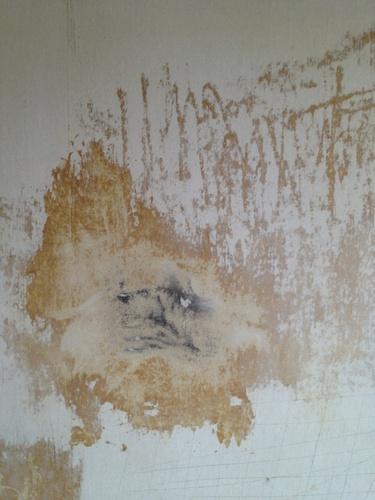 Vinyl behang verwijderen werkspot for Trapgat behangen