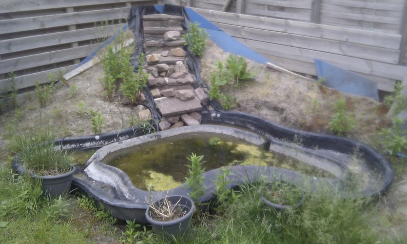 Aanleg vijver met waterval stukje terras bestraten for Tuinvijvers aanleggen