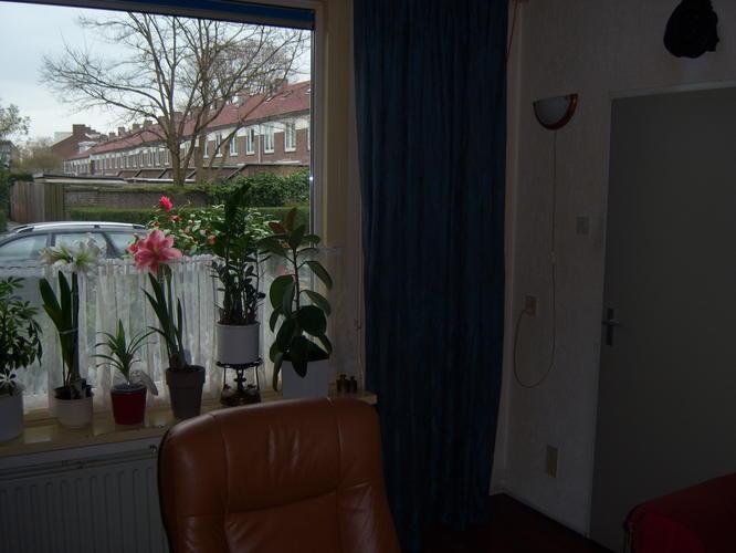 Woonkamer witten gang trap overloop en een kleine kamer for Trapgat behangen