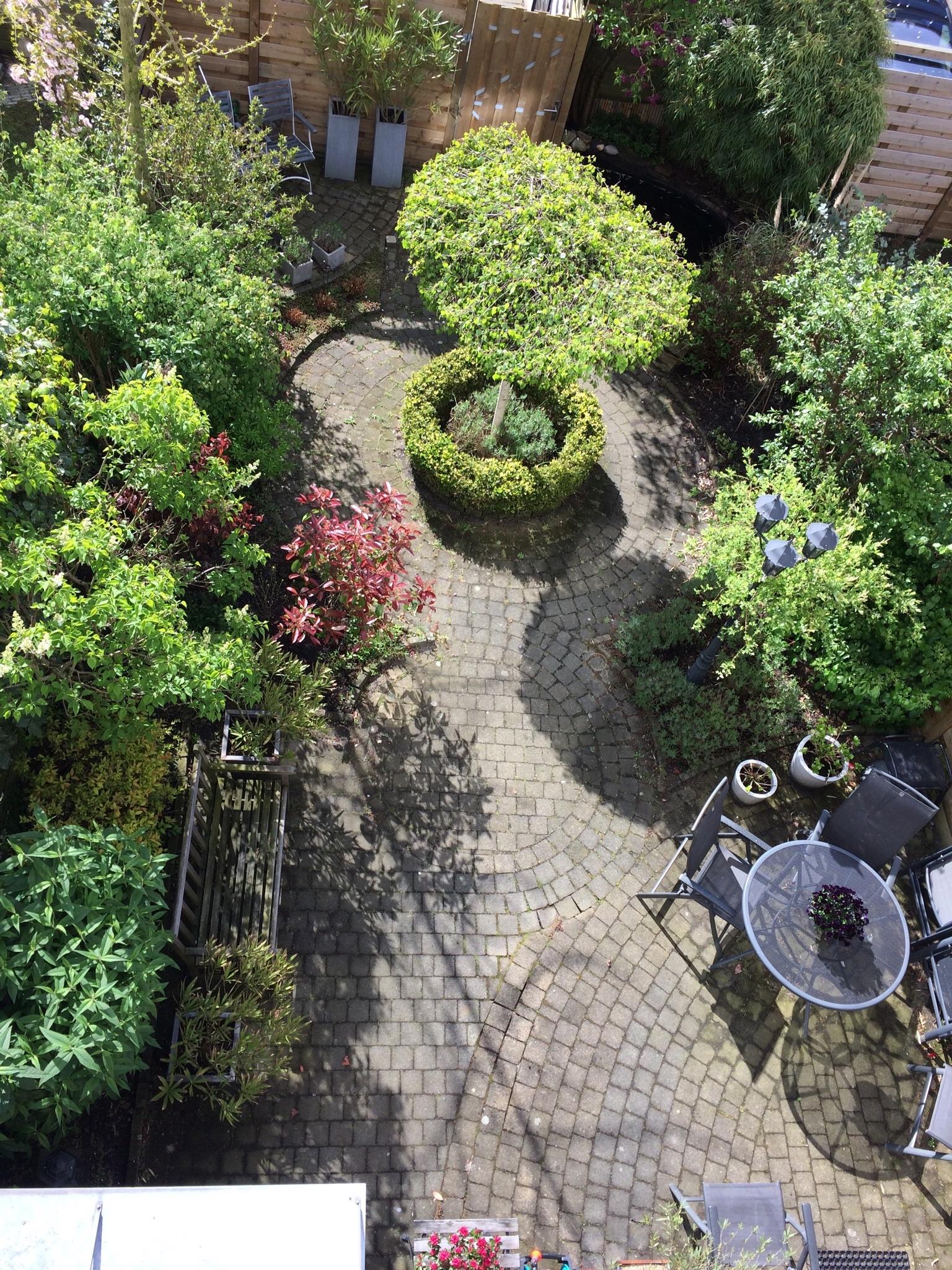 Tuin renovatie en vijver aanleggen werkspot for Tuin en vijver