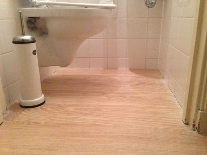 Kitten houten vloer op toilet werkspot