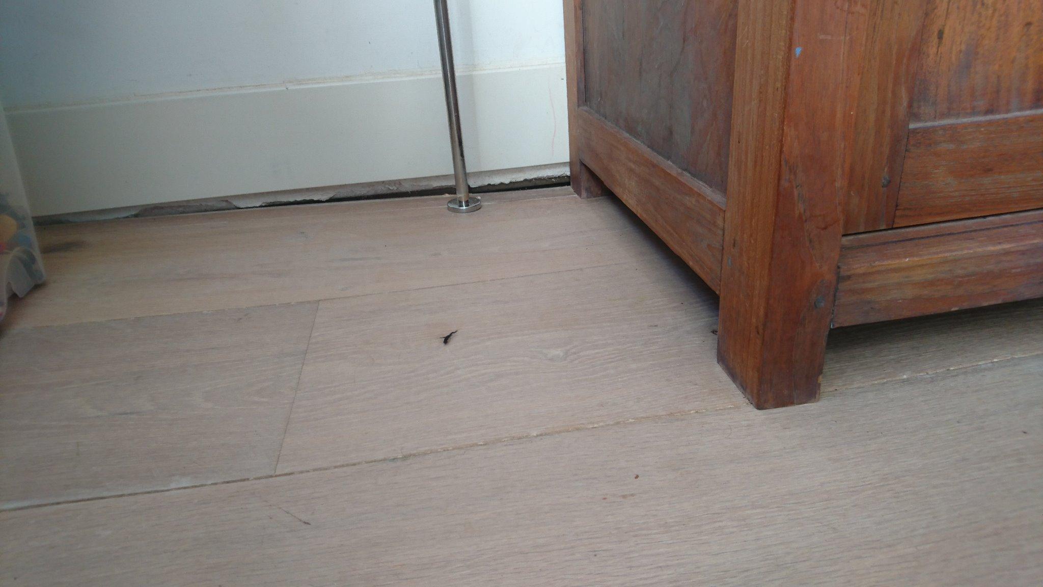 Egaliseren plaatstelijk verzakte houten vloer werkspot