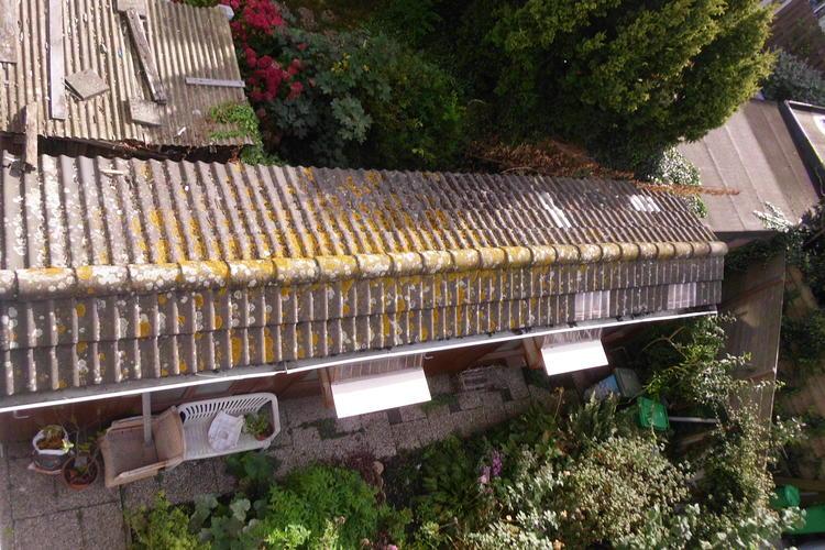Dumo duivenhok verplaatsen van den haag naar amsterdam for Vlizotrap monteren