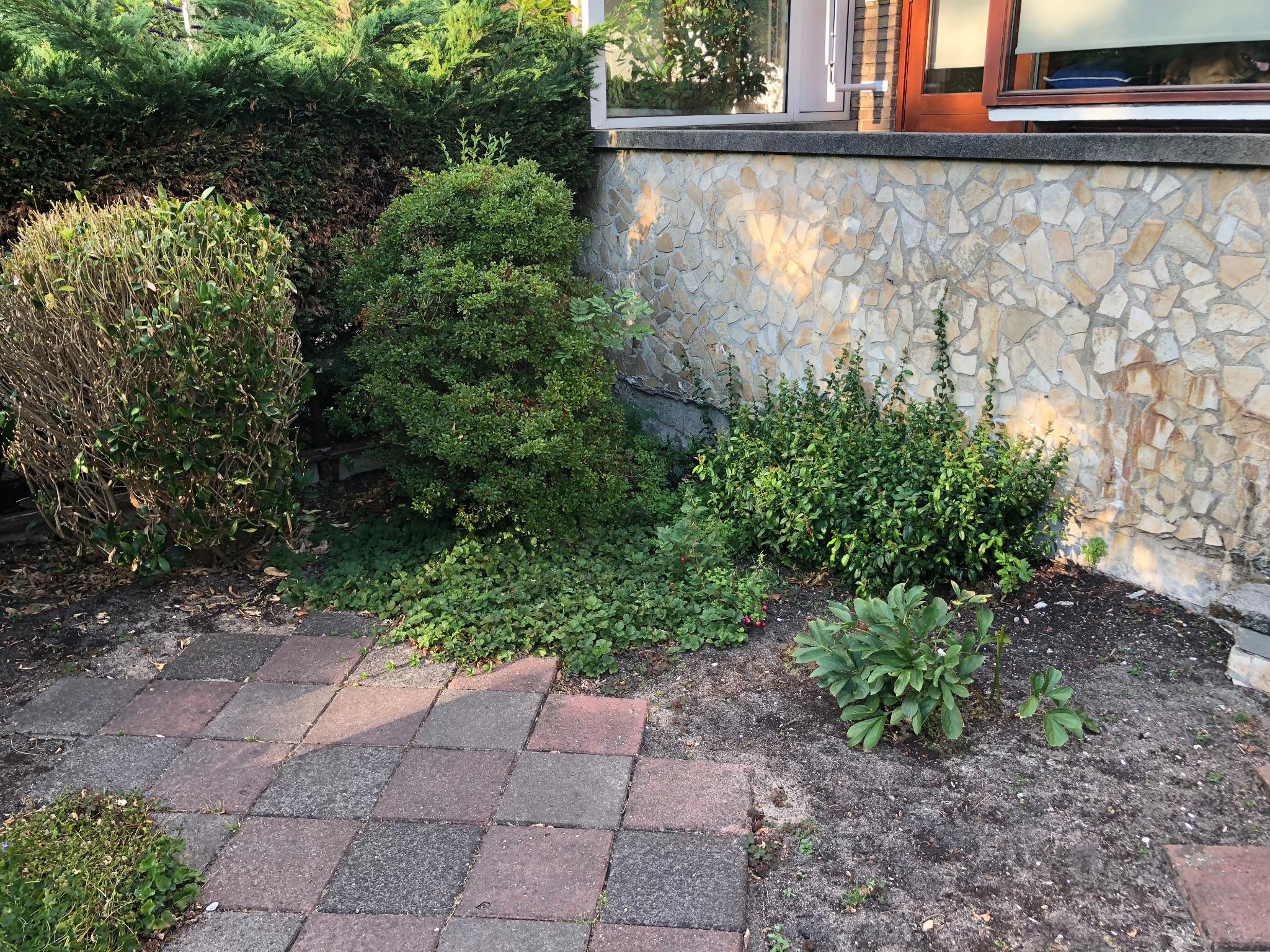 Tuin aanleggen bestraten en hek werkspot