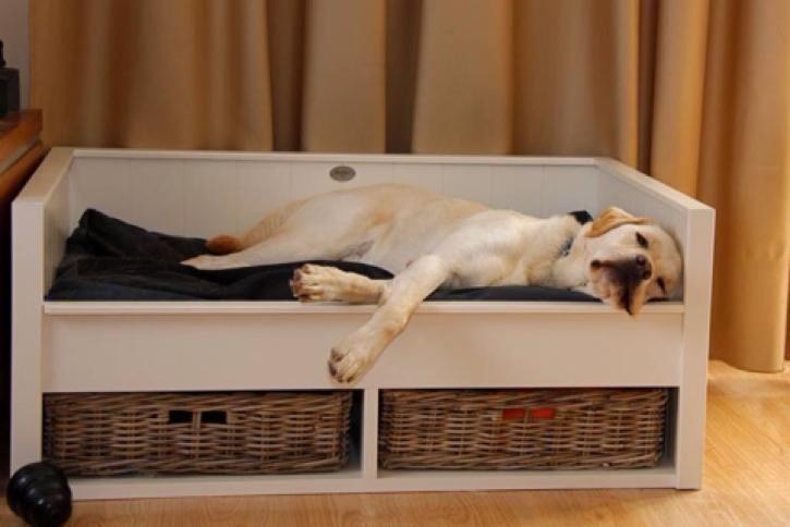 Houten hondenmand maken werkspot for Houten vijverbak maken
