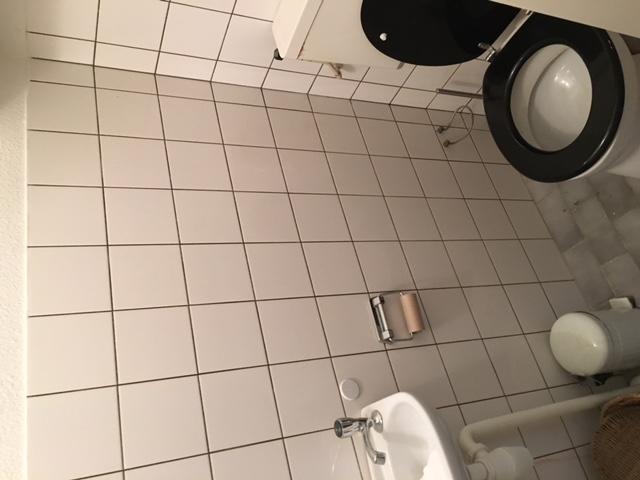 Hoogte Sierstrip Badkamer : Badkamer toilet tegelvloer leggen toilet vervangen