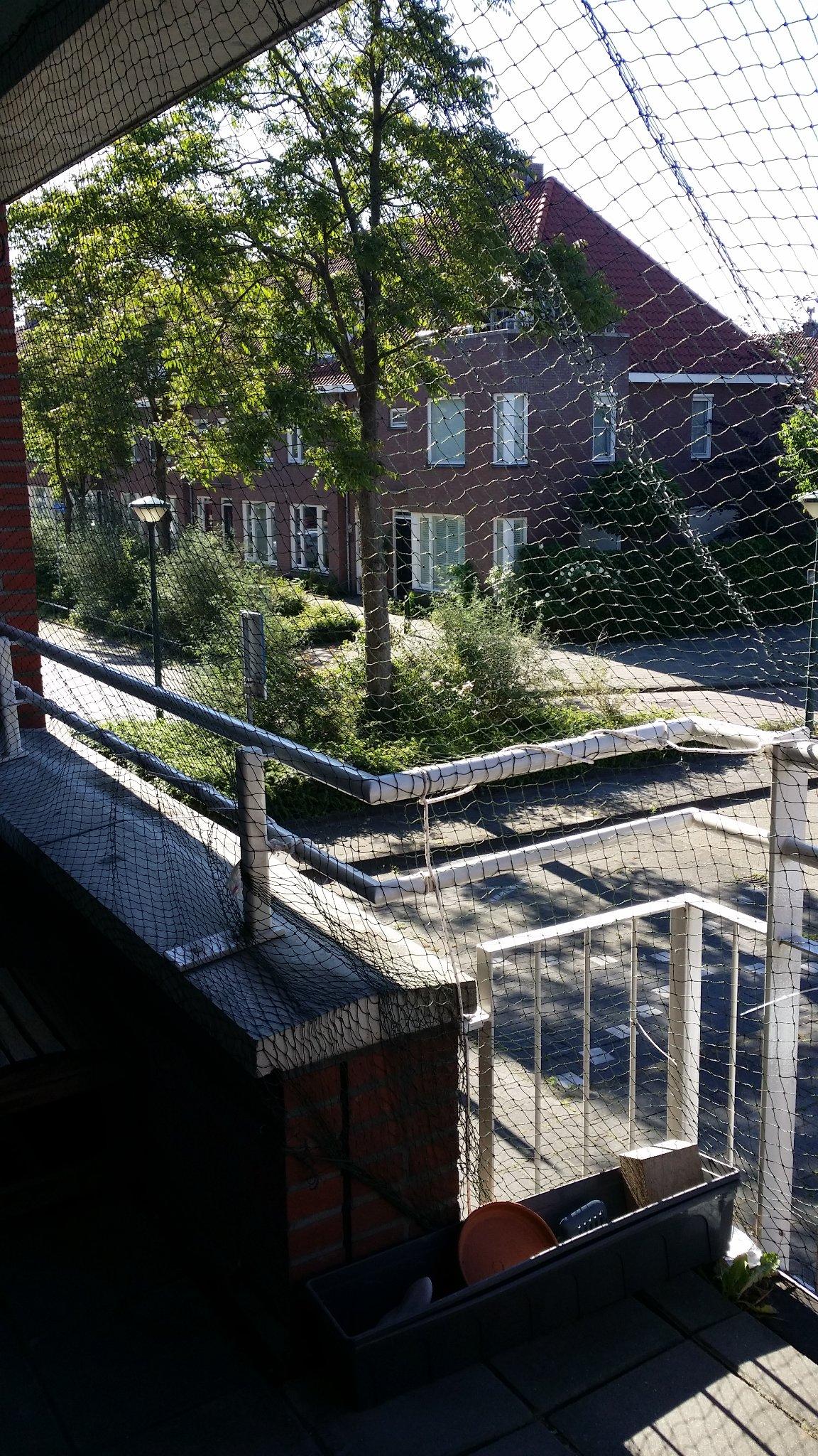 Houten constructie op het balkon om kattennet te plaatsen for Vlizotrap plaatsen