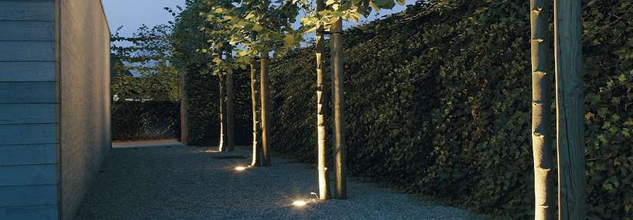 bestrating achtertuin, 6 boompjes + verlichting - Werkspot