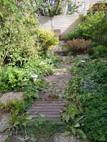 Bestraten ca 6 m2 tuin met gewassen grindtegels 50x50 met for Tuin laten bestraten