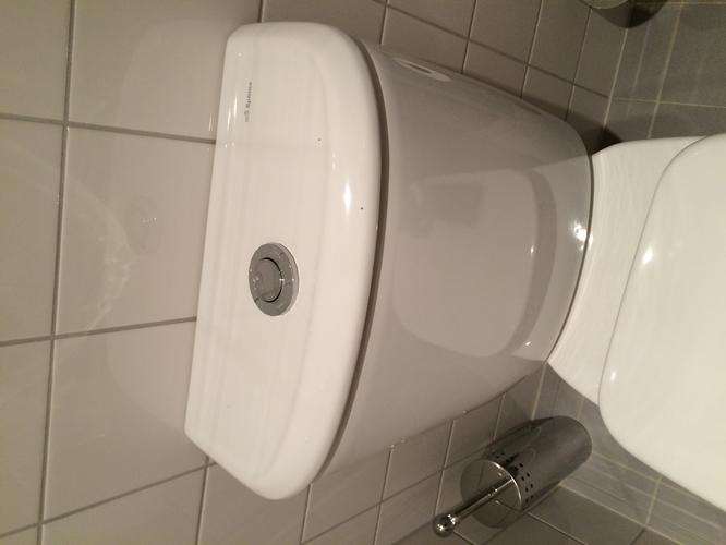 Binnenwerk Toilet Reservoir : Binnenwerk toilet reservoir en drukknop vervangen van 2 toiletten